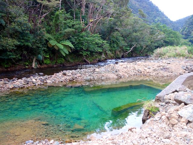 奄美大島のタンギョの滝
