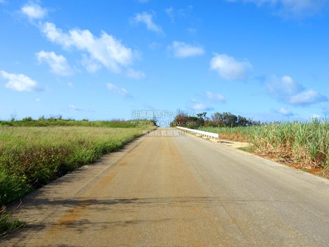 南大東島の滑走路脇の一本道