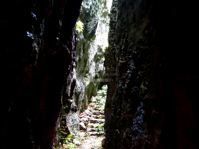 南大東島のバリバリ岩