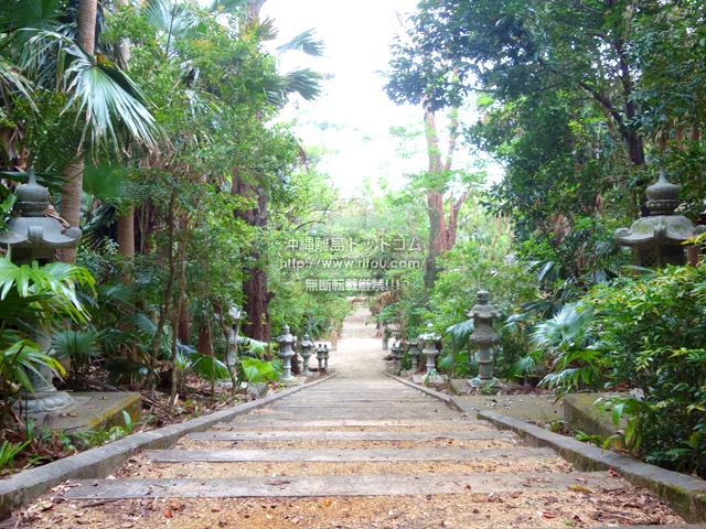 南大東島の大東神社/ダイトウオオコウモリのねぐら