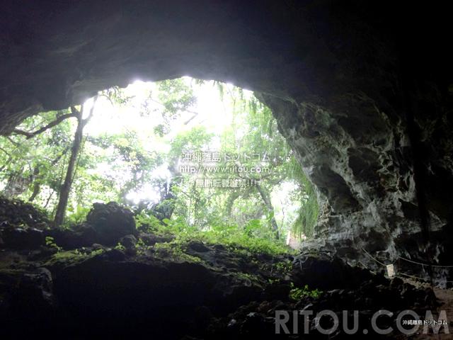 久米島の松林