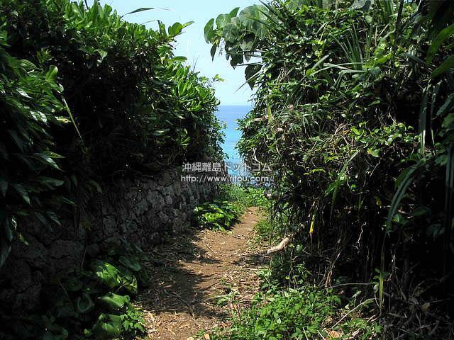 あぜ道の先には海が見える(久高島の壁紙/写真)
