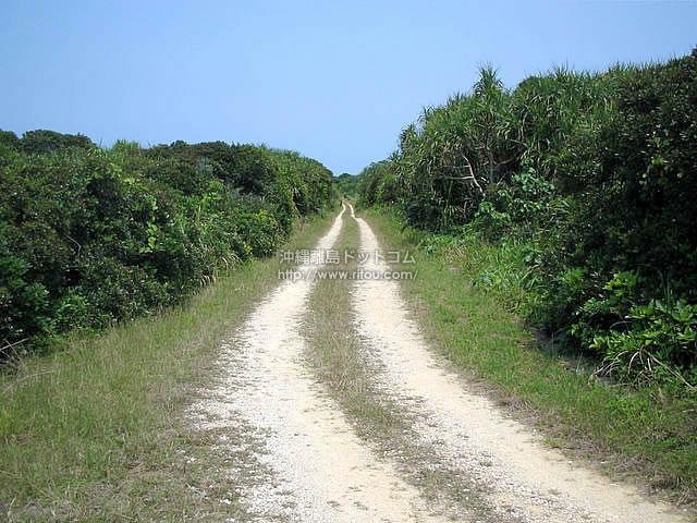 果てしなく続く離島の道(久高島の壁紙/写真)