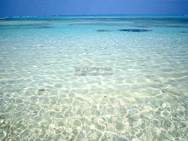 透明すぎる海(与論島の壁紙/写真)