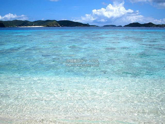 透明すぎる海の色(阿嘉島の壁紙/写真)