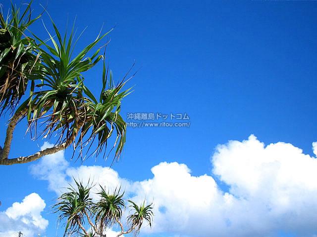 夏の空・沖縄の空(阿嘉島の壁紙/写真)