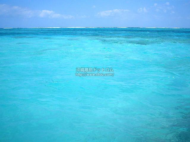 この海に飛び込みたい(与論島の壁紙/写真)