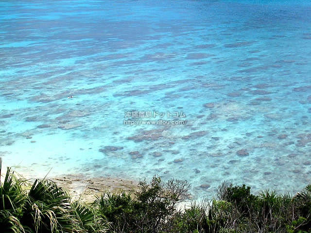 透明すぎて罪な海(渡嘉敷島の壁紙/写真)