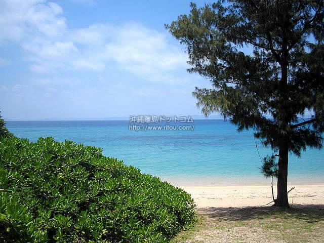 ビーチの木陰(津堅島の壁紙/写真)