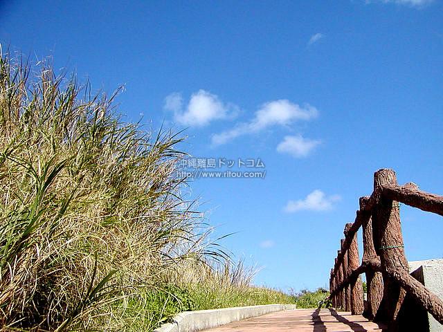 粟国島の遊歩道(粟国島の壁紙/写真)
