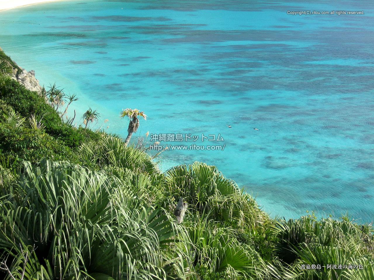 渡嘉敷島〜阿波連の海の色