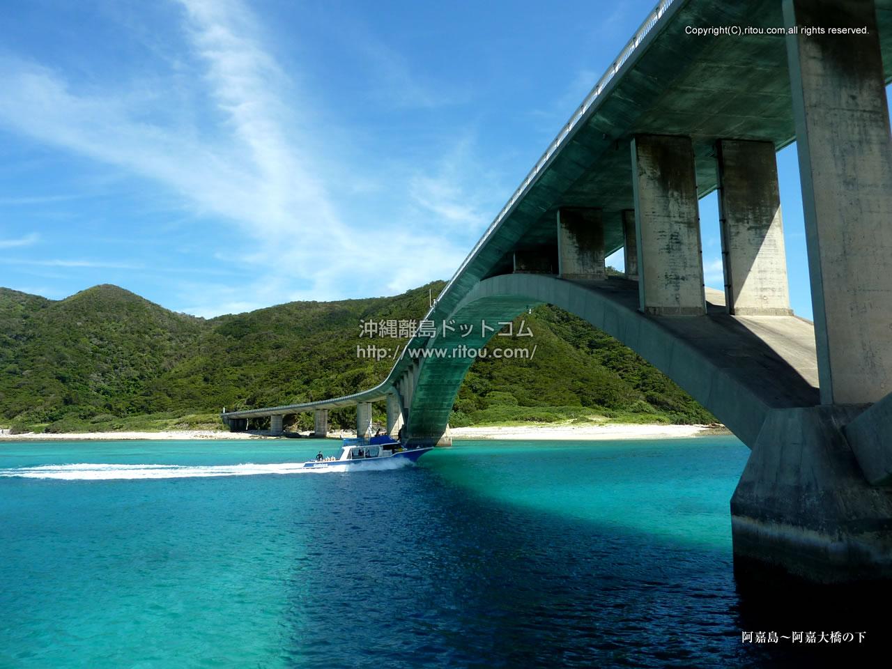阿嘉島〜阿嘉大橋の下
