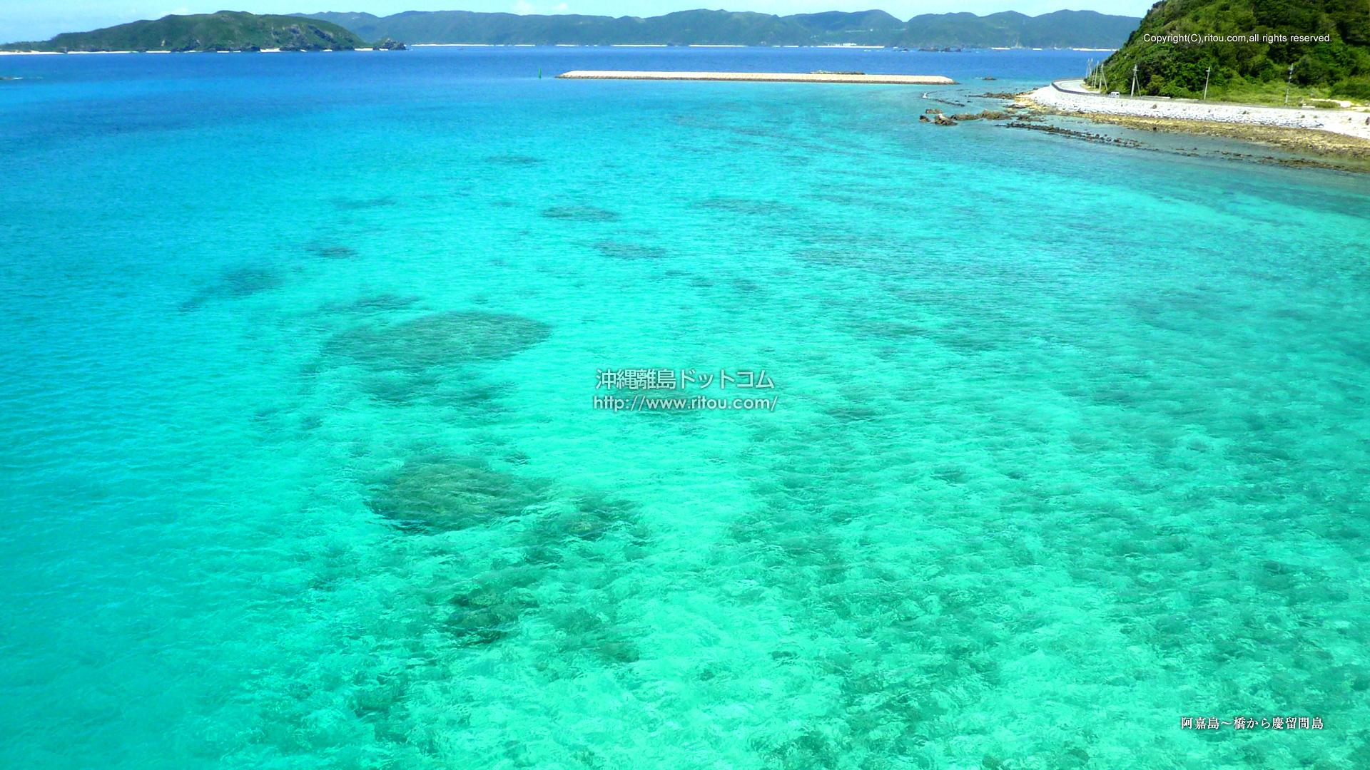 阿嘉島〜橋から慶留間島