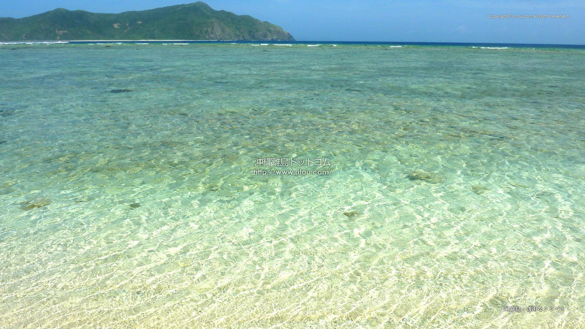 阿嘉島〜透明なクシバル
