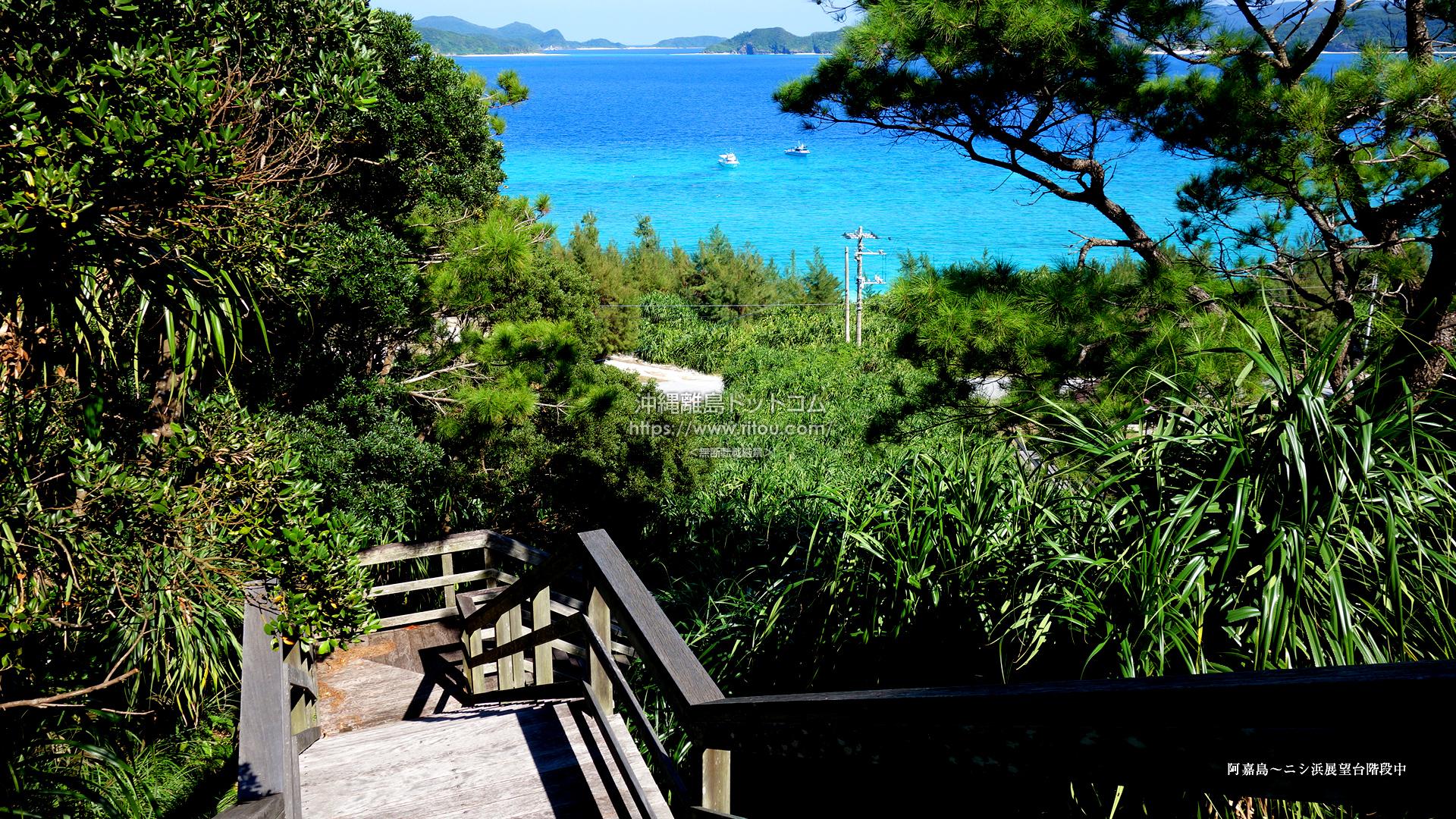 阿嘉島〜ニシ浜展望台階段中