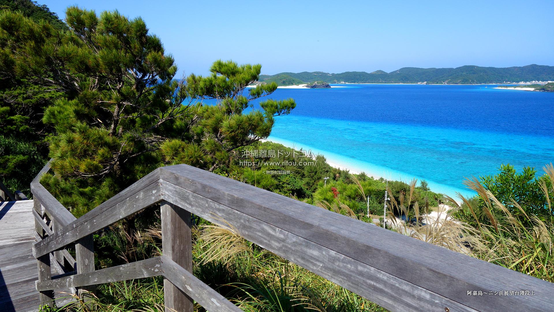 阿嘉島〜ニシ浜展望台階段上