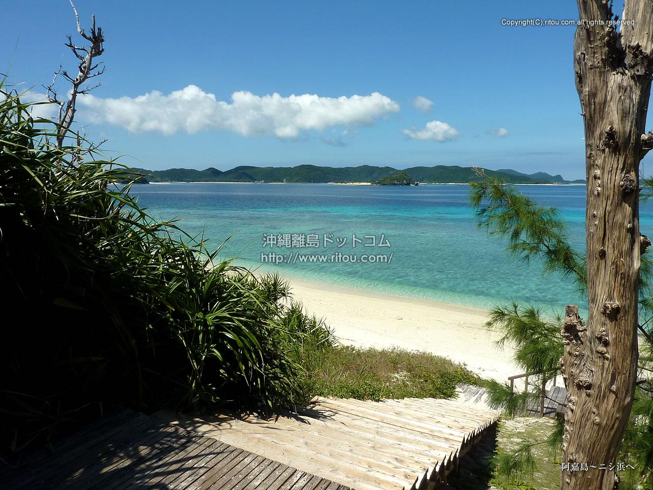 阿嘉島〜ニシ浜へ