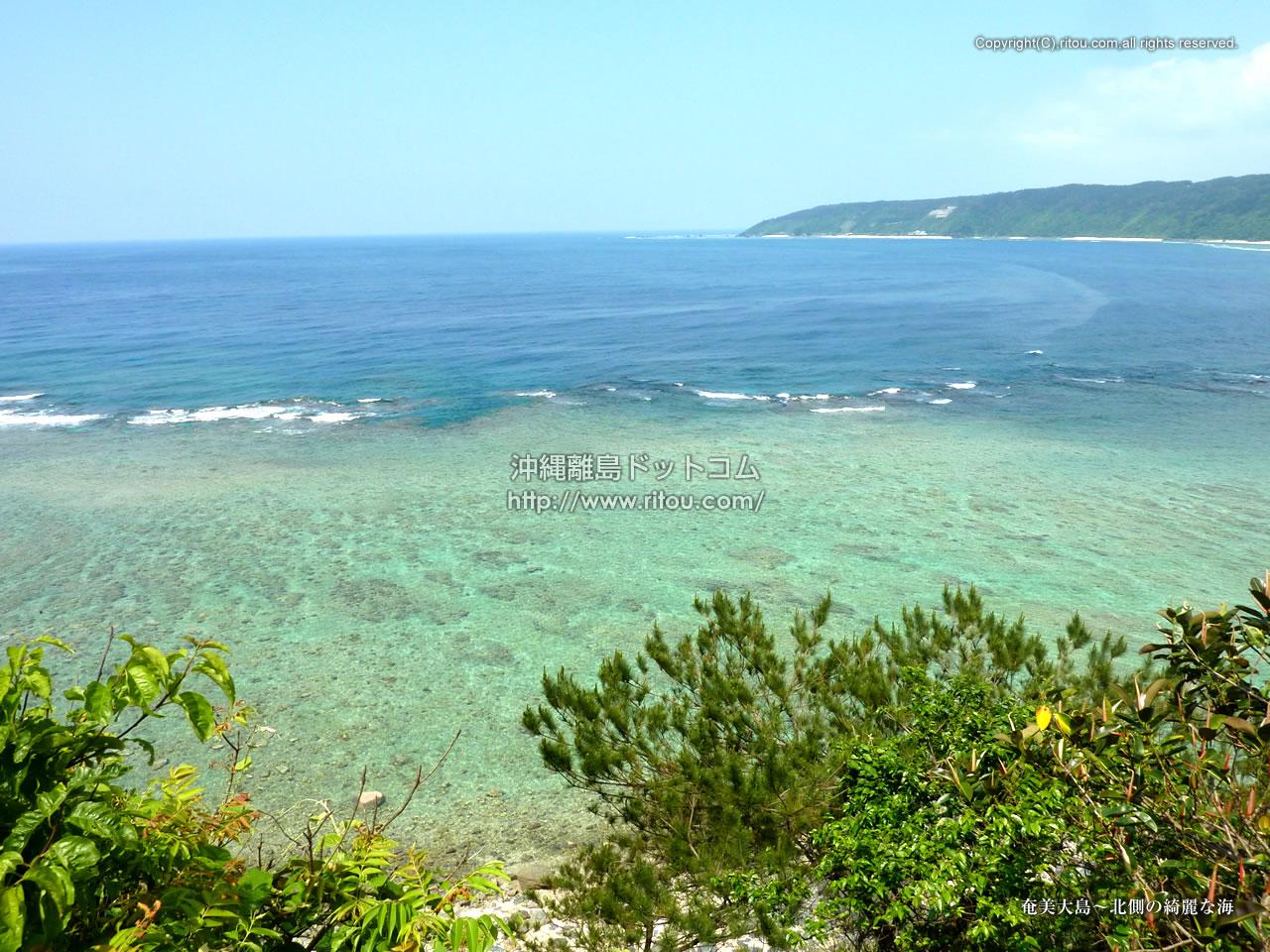 奄美大島〜北側の綺麗な海