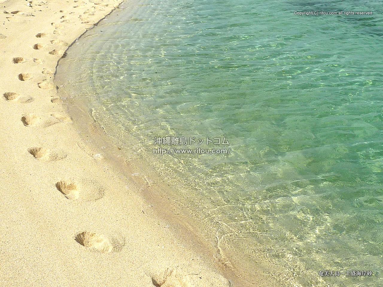 奄美大島〜土盛海岸砂