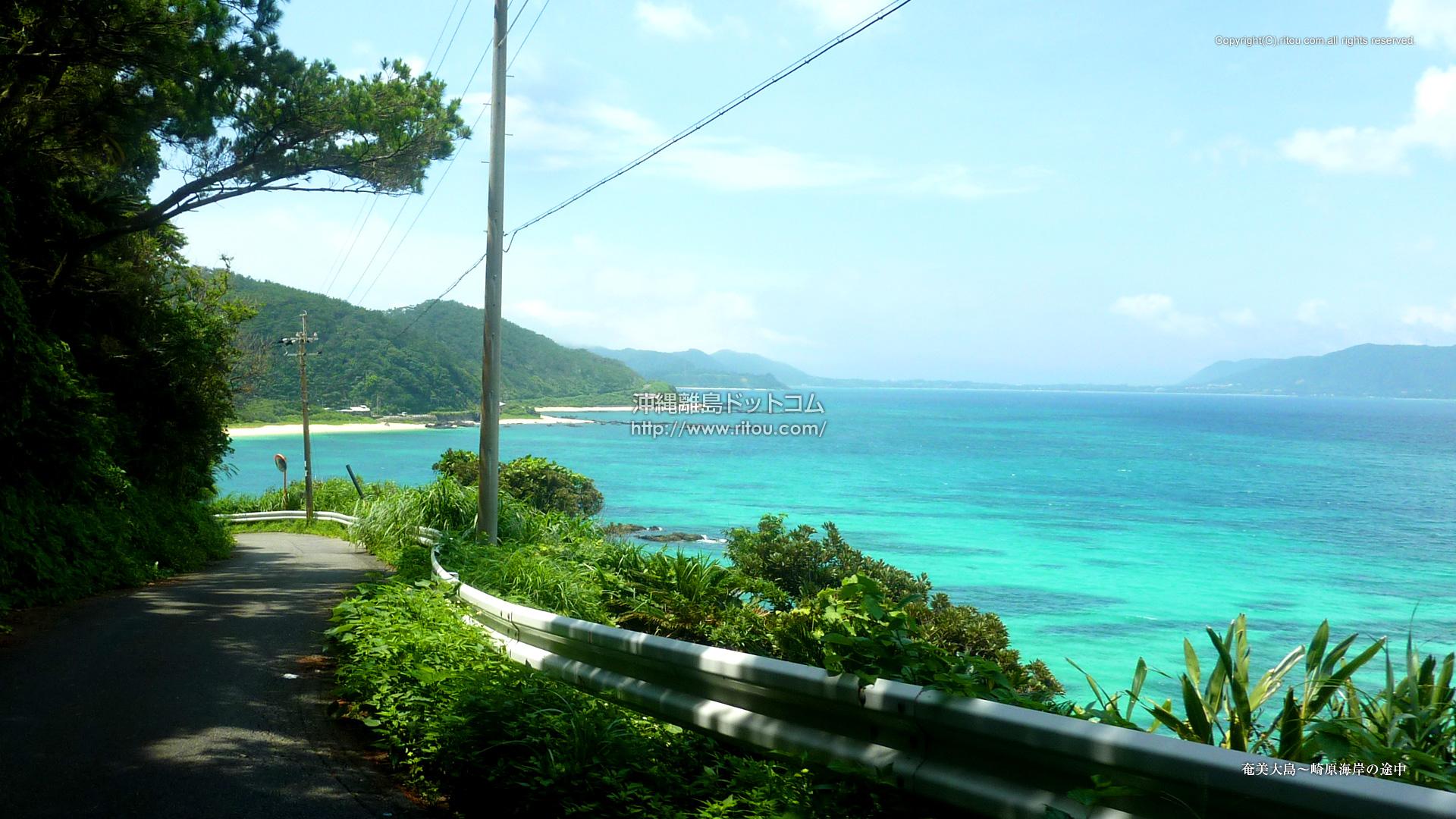 奄美大島〜崎原海岸の途中