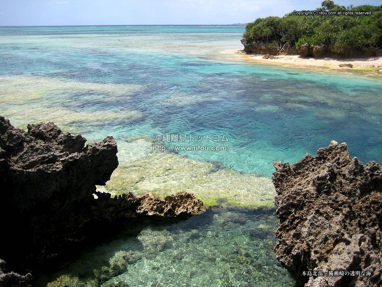 本島北部〜備瀬崎の透明な海
