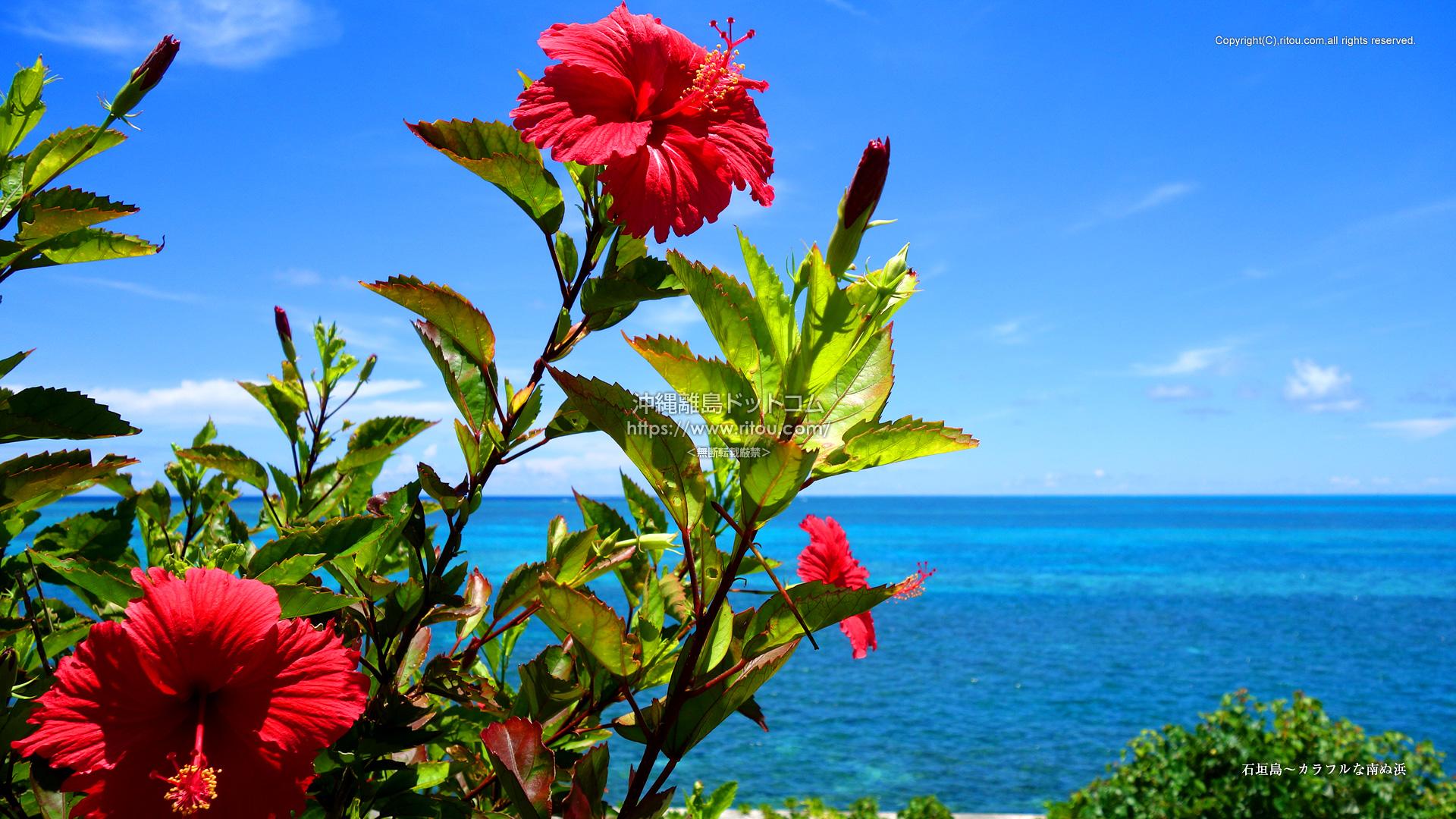 石垣島〜カラフルな南ぬ浜