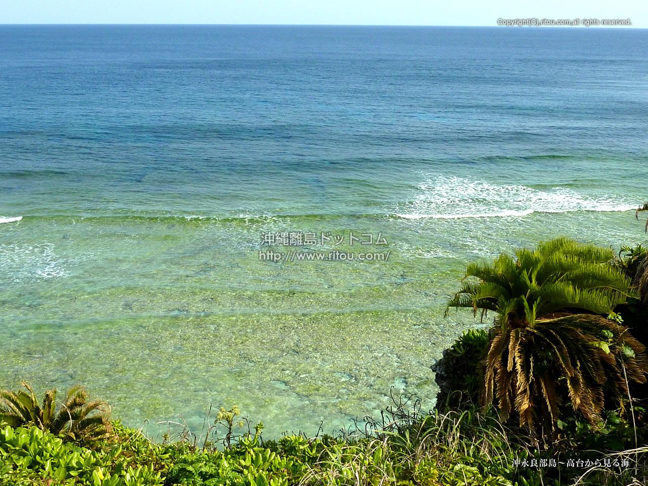 沖永良部島〜高台から見る海