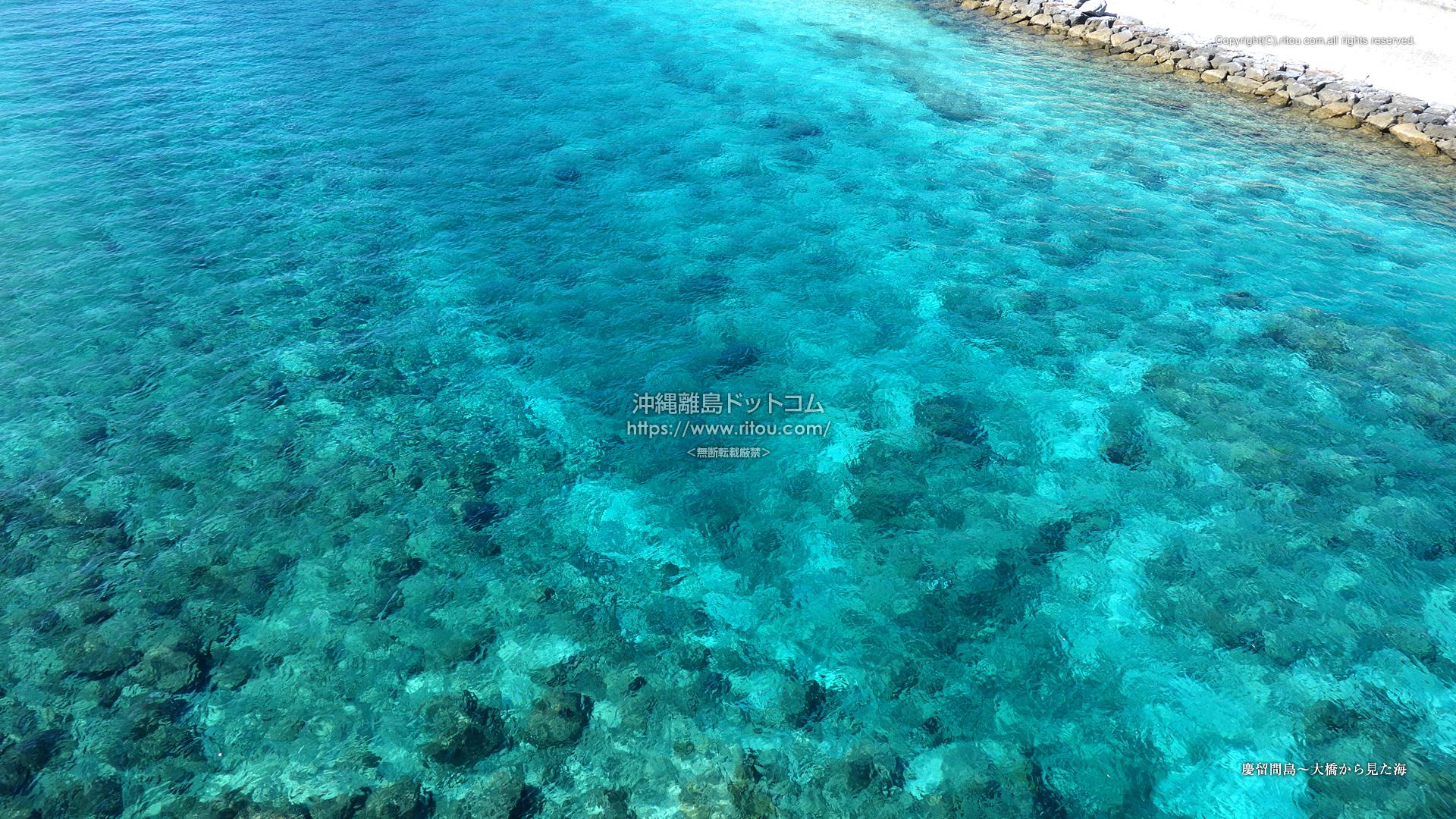 慶留間島〜大橋から見た海