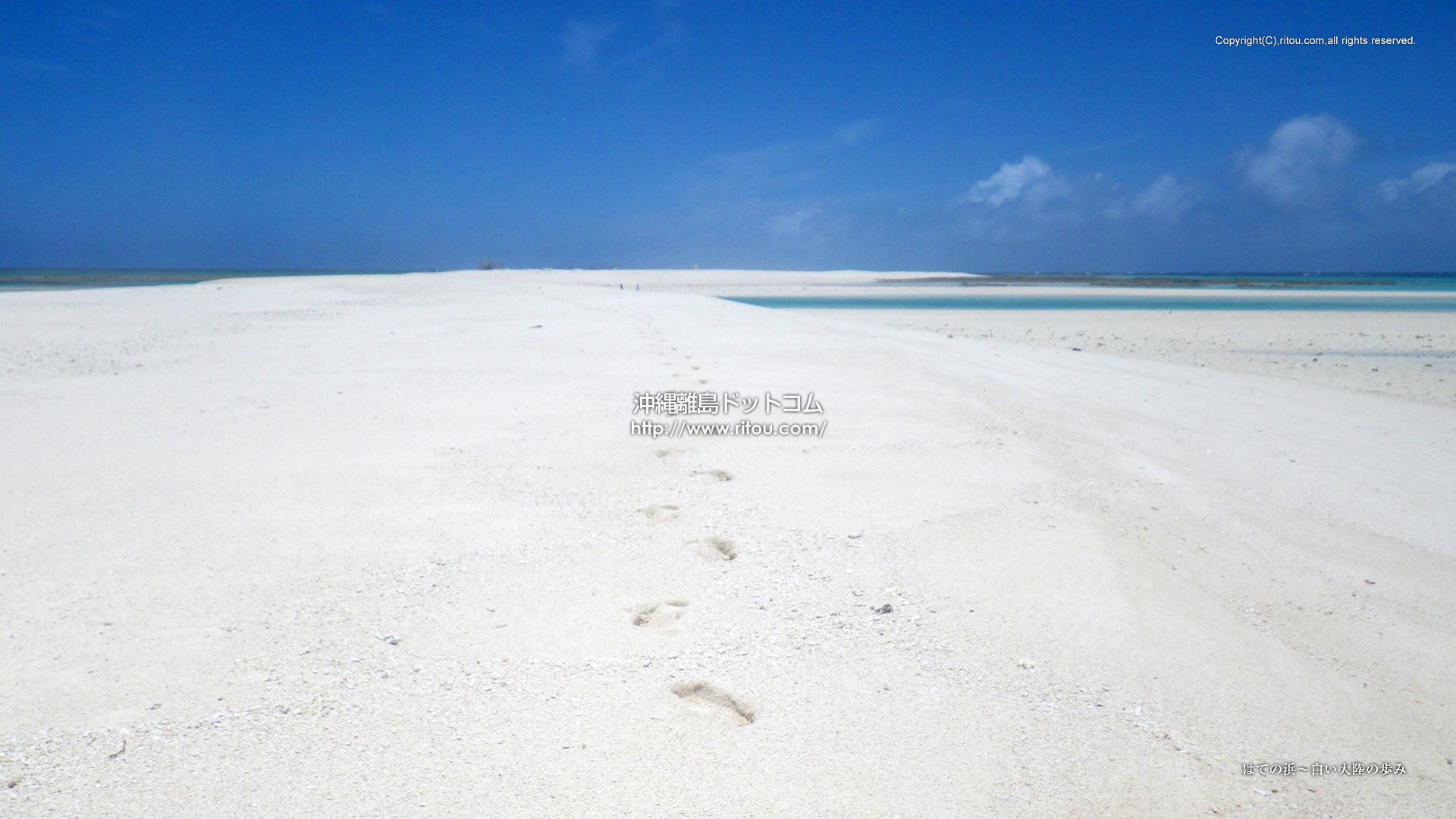 はての浜〜白い大陸の歩み