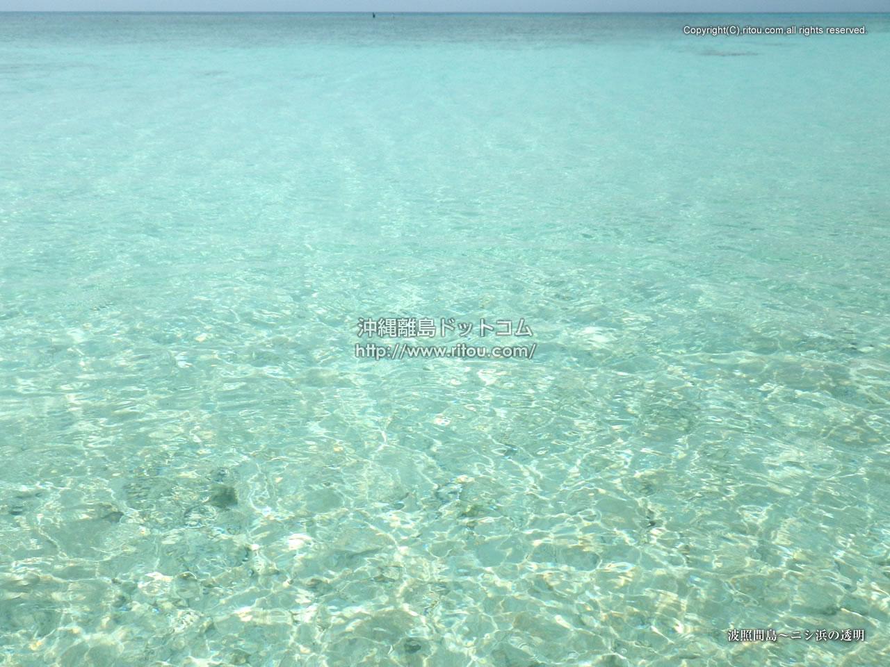 波照間島〜ニシ浜の透明
