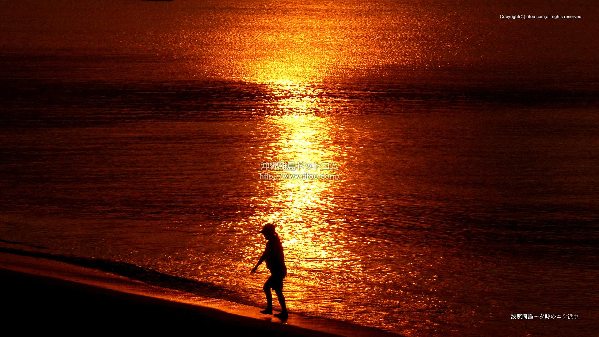 波照間島〜夕時のニシ浜中