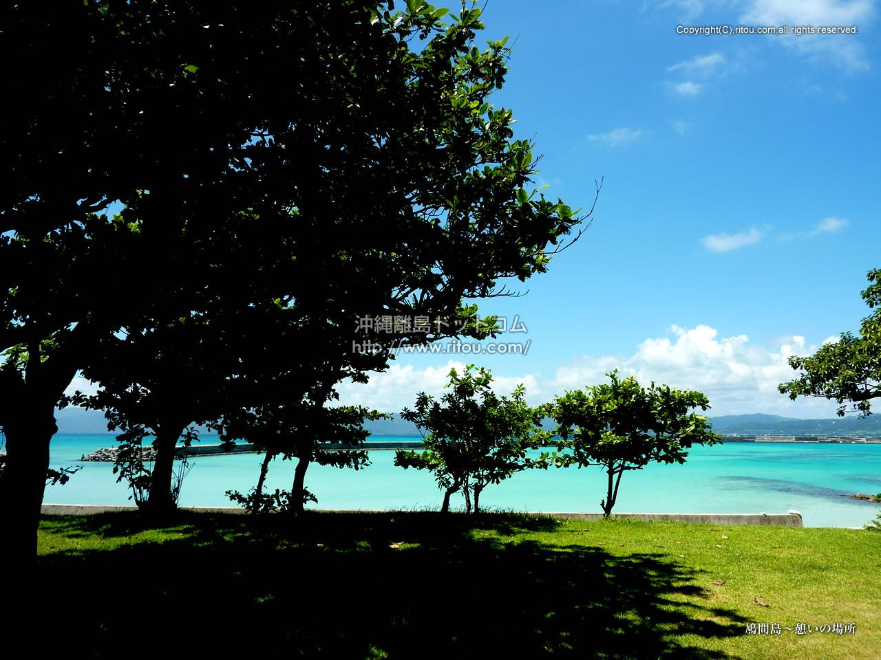 鳩間島〜憩いの場所