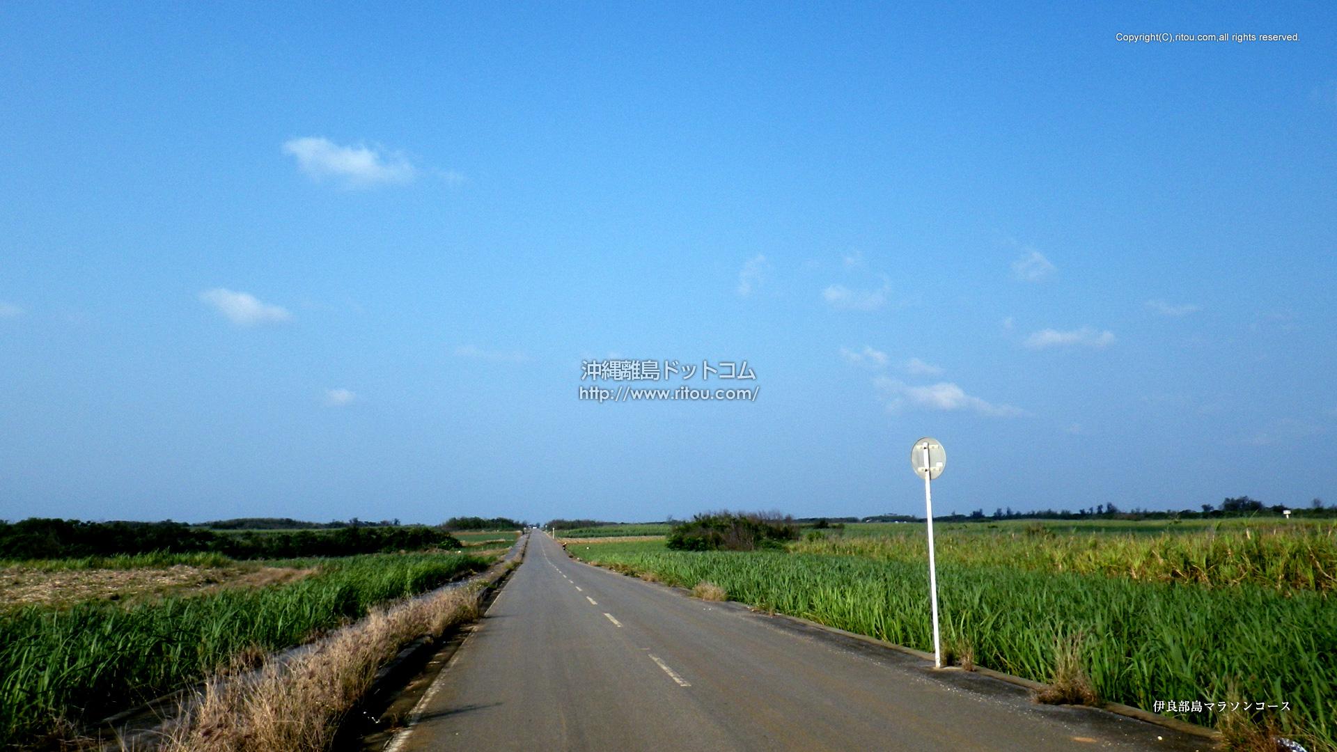 伊良部島マラソンコース
