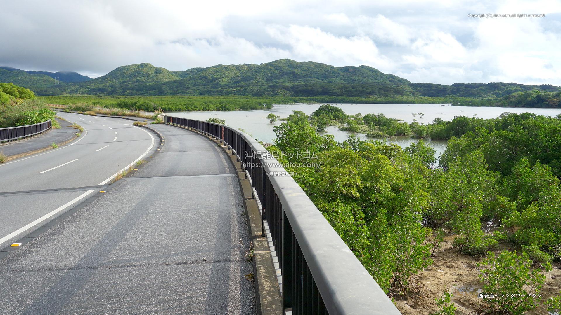西表島〜マングローブラン