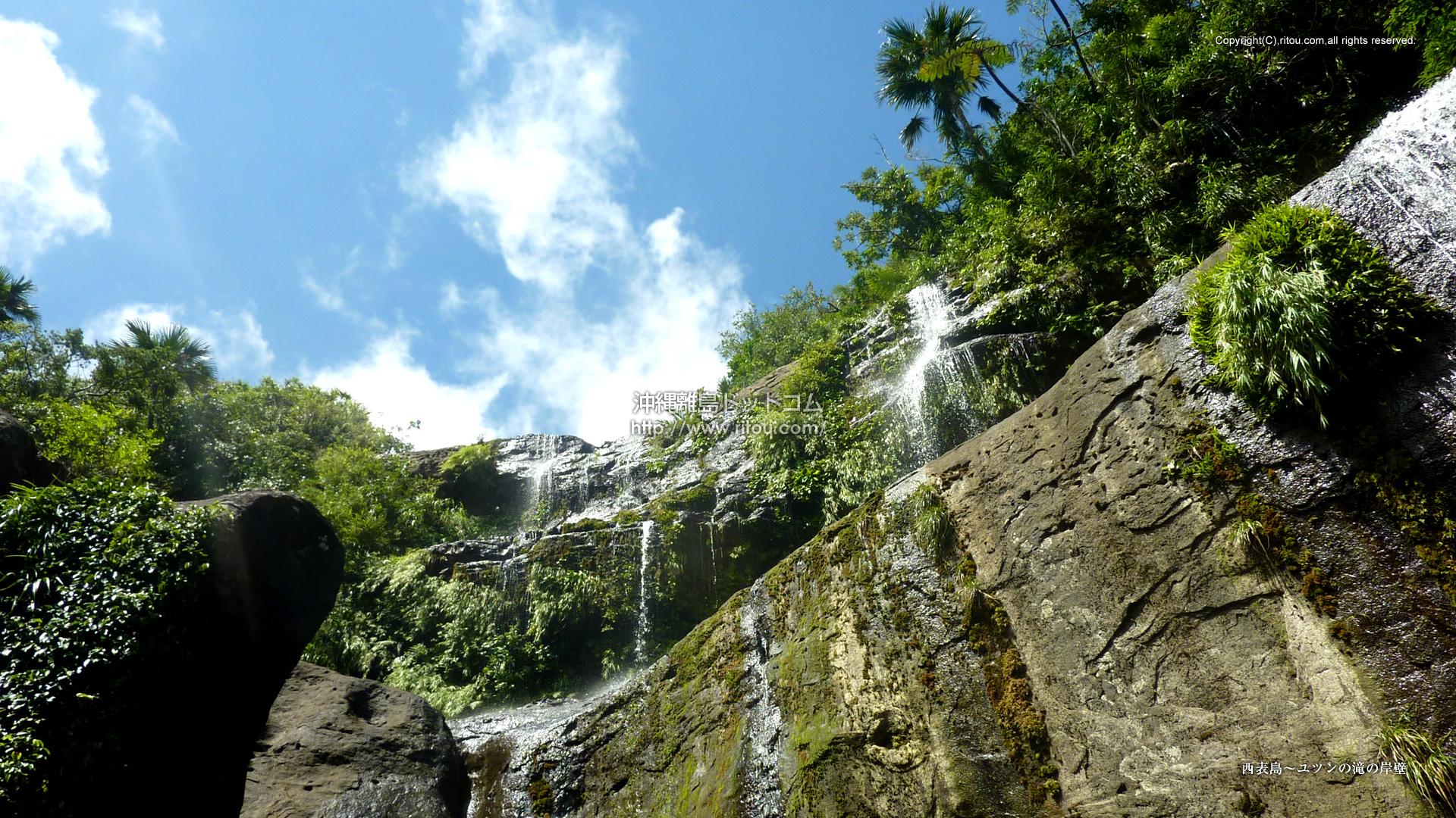 西表島〜ユツンの滝の岸壁