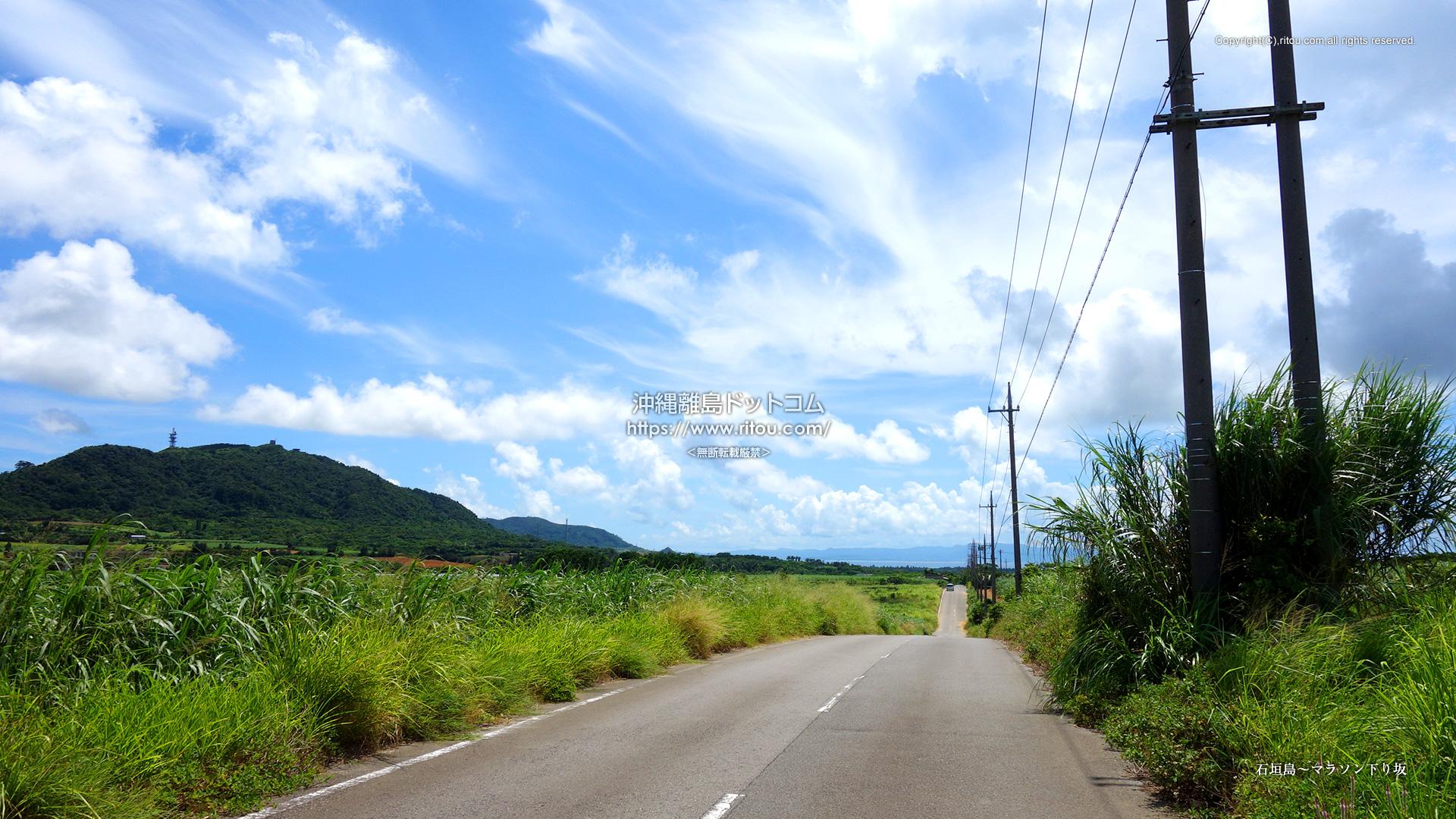 石垣島〜マラソン下り坂