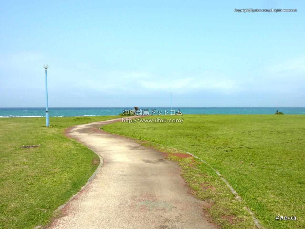 喜界島の道
