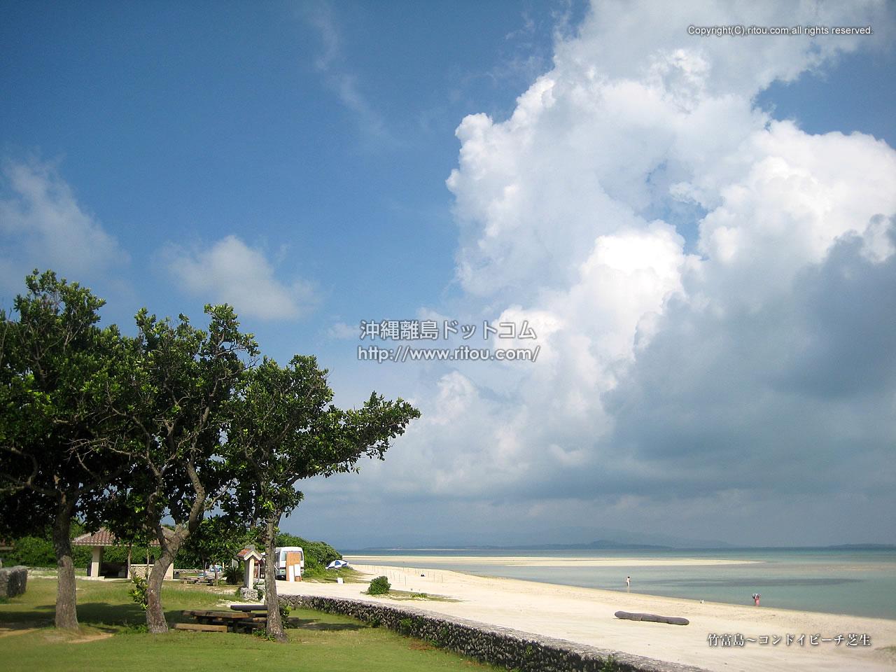 竹富島〜コンドイビーチ芝生