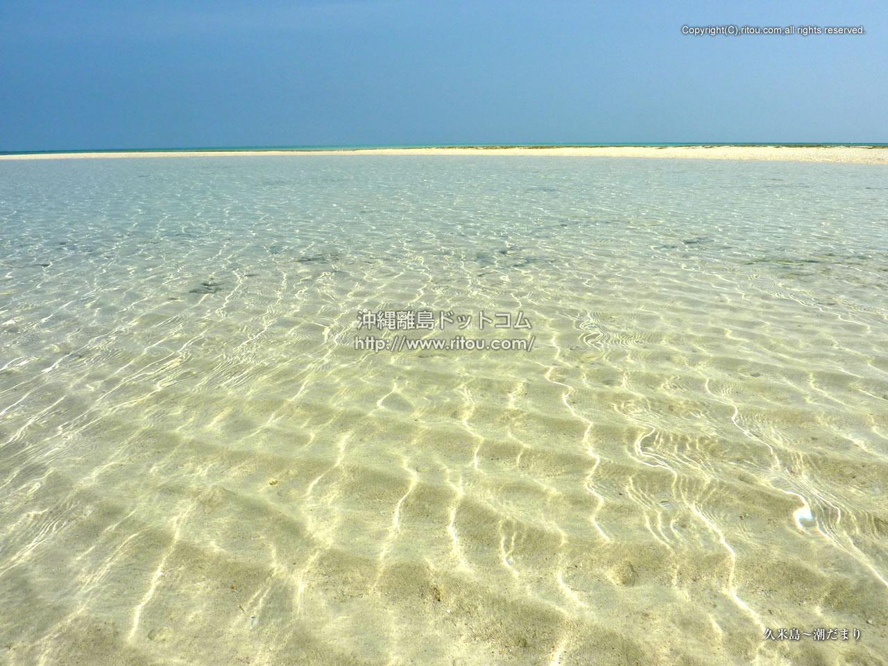 久米島〜潮だまり