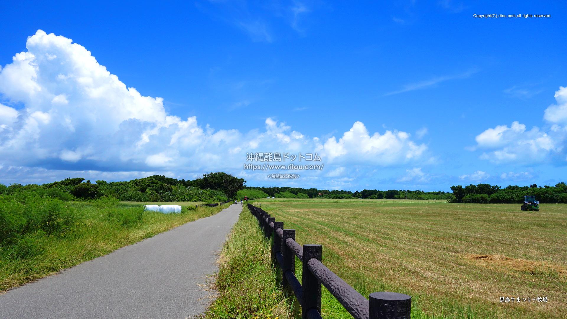黒島牛まつり〜牧場
