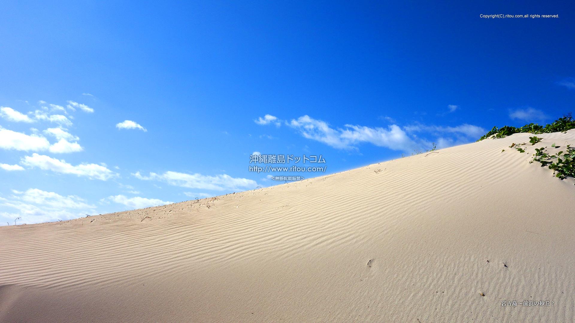 宮古島〜前浜の砂丘?