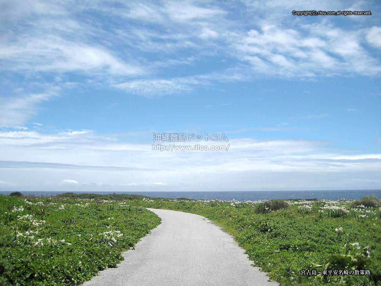 宮古島〜岬の散策路