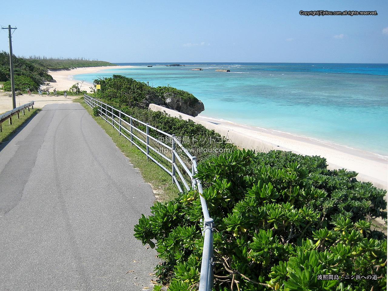 波照間島〜ニシ浜への道