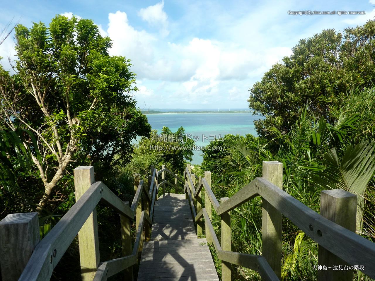 大神島〜遠見台の階段
