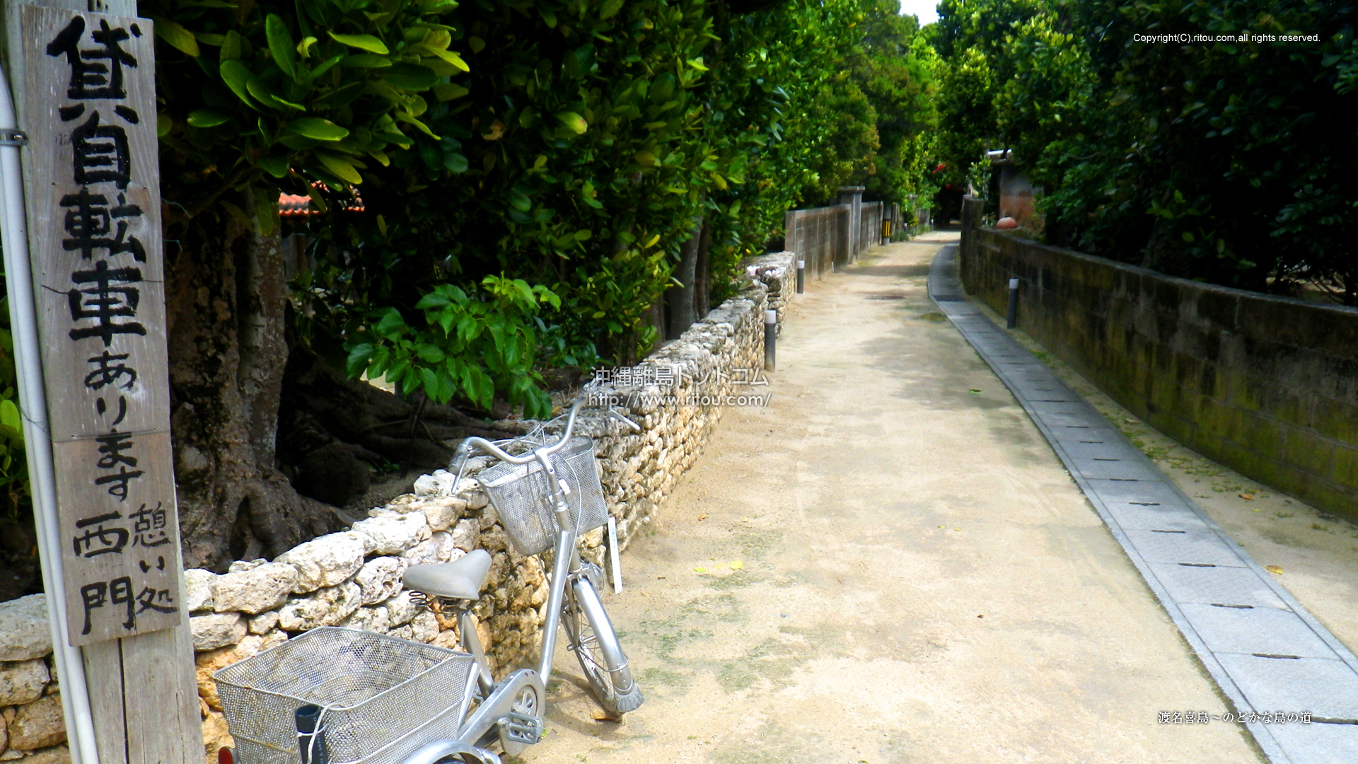 渡名喜島〜のどかな島の道
