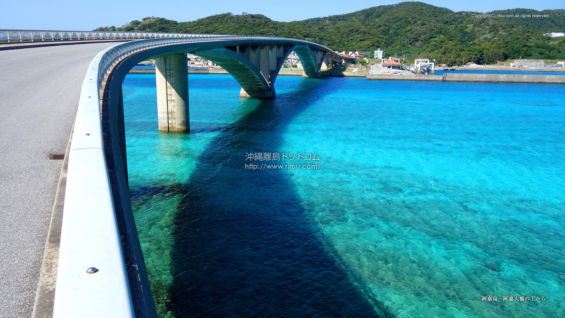 阿嘉島〜阿嘉大橋の上から