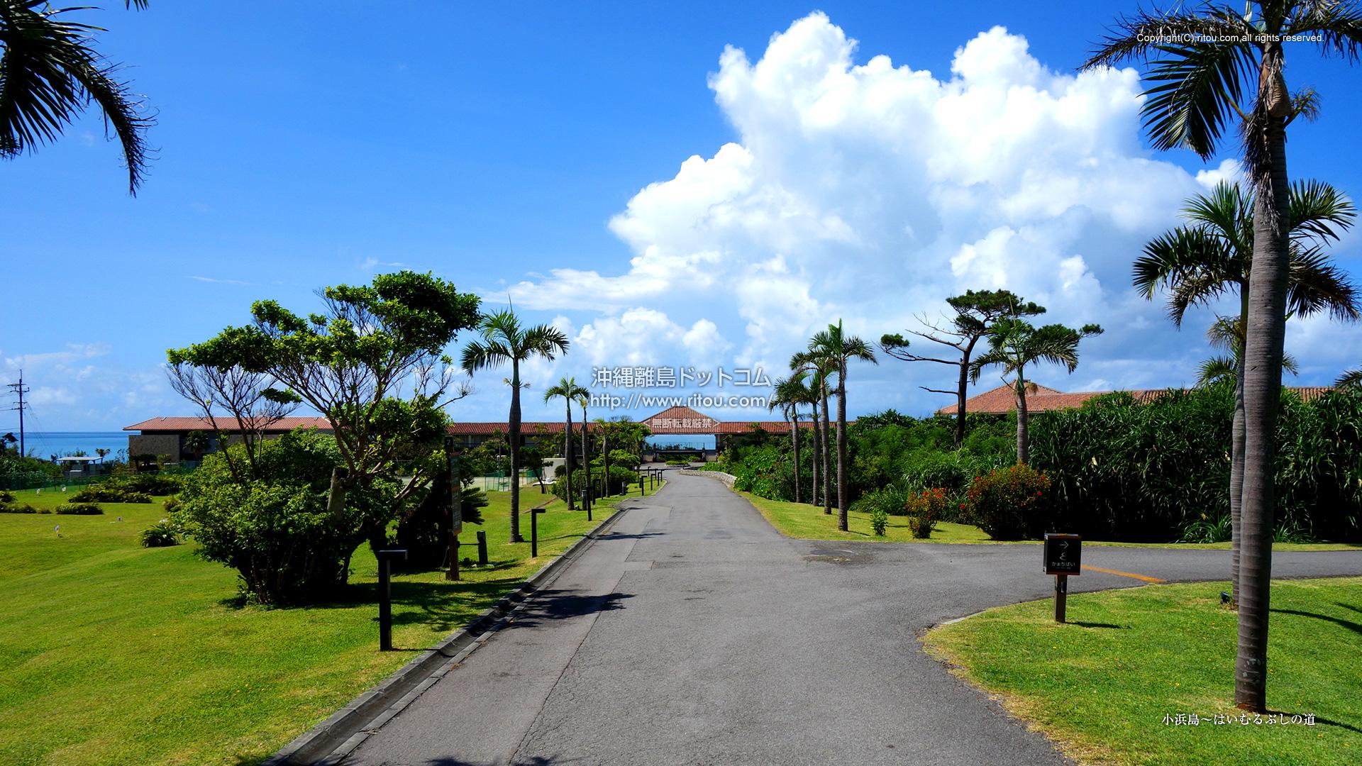 小浜島〜はいむるぶしの道