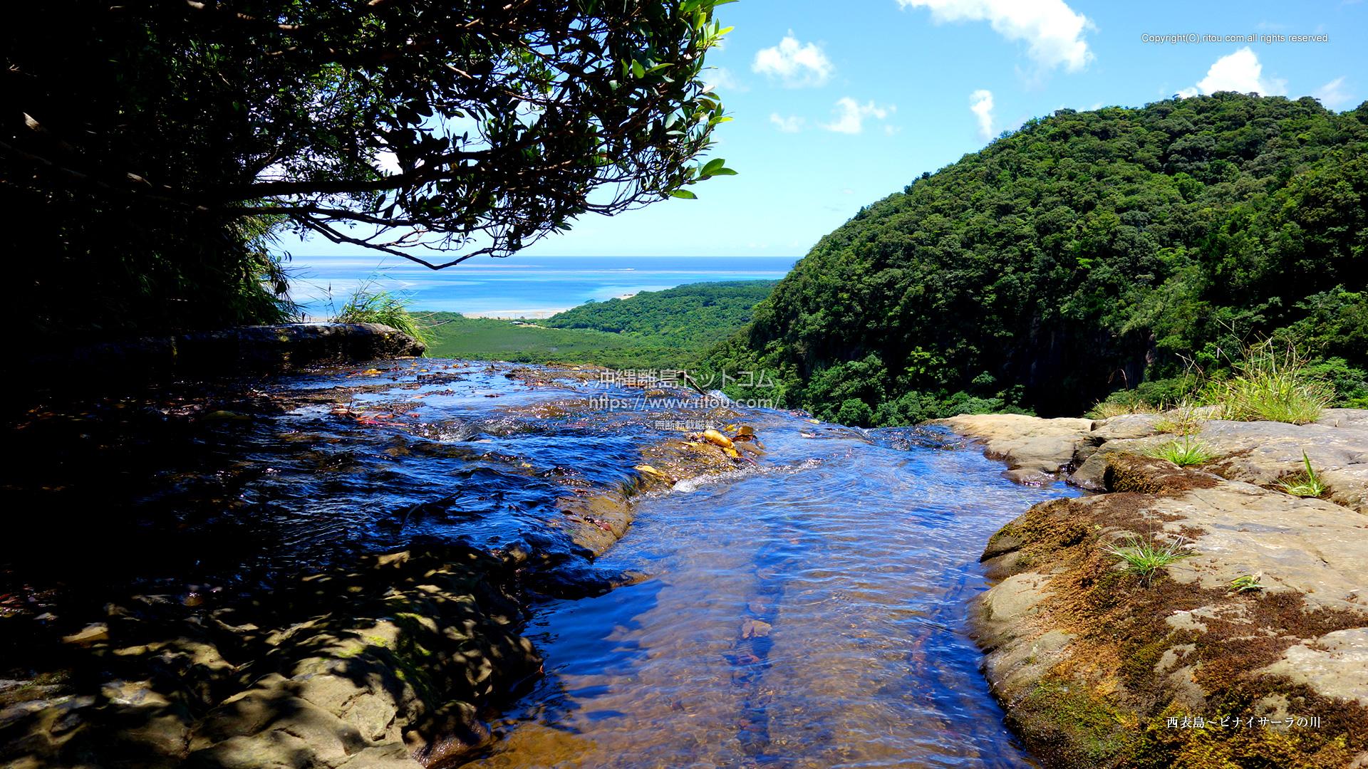 西表島〜ピナイサーラの川