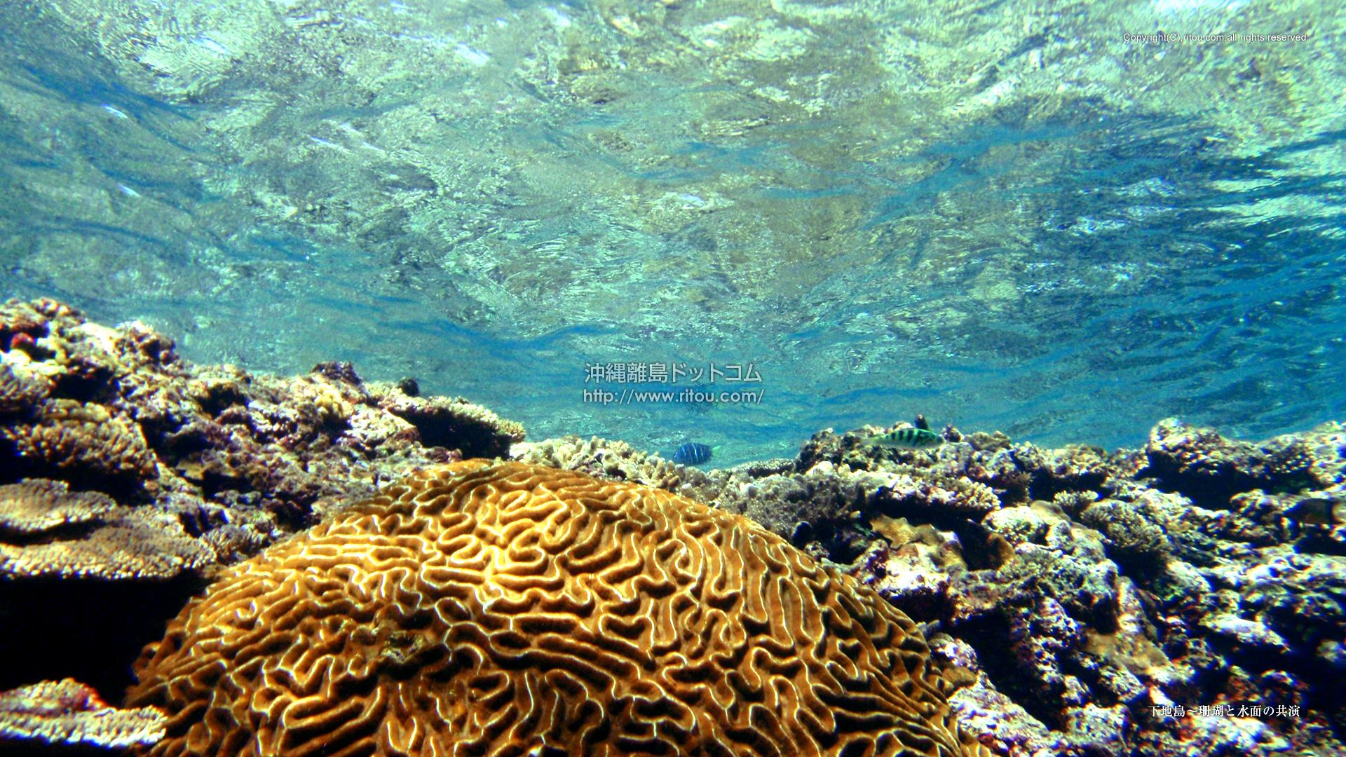 下地島〜珊瑚と水面の共演