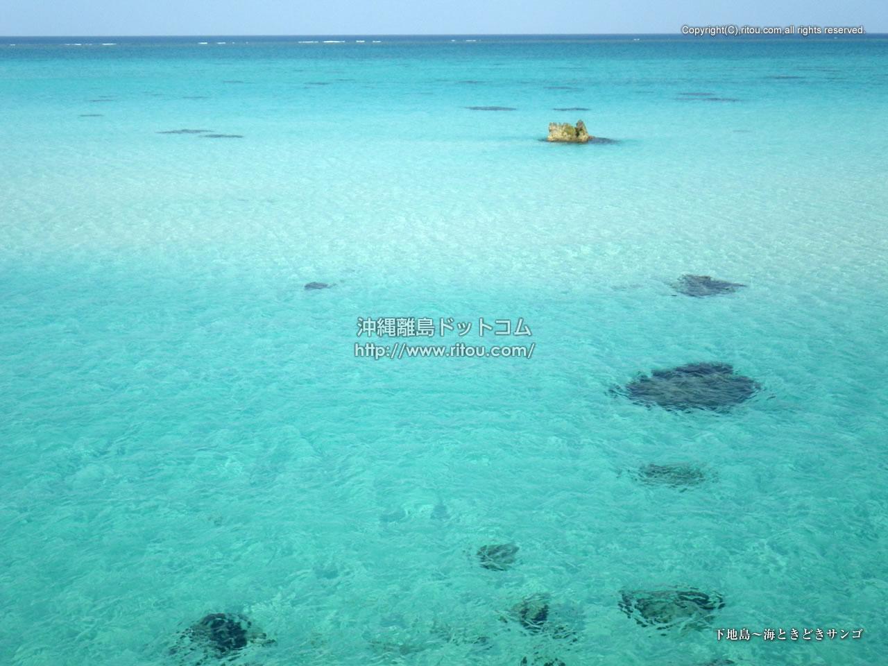 下地島〜海ときどきサンゴ